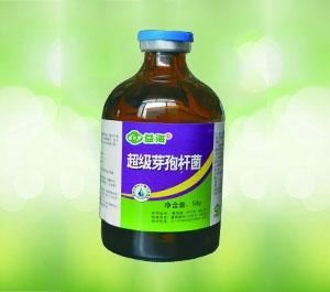 辽宁超级芽孢杆菌