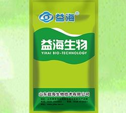 黑臭水体改良生物剂