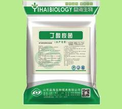 丁酸梭菌水产专用
